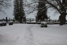 Zima ve vesnici