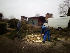 Kácení dřevin na myslivecké chatě