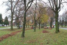Podzimní hrabání listí